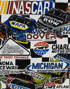 NASCAR Sprint Cup Tribute -- Sports Painting